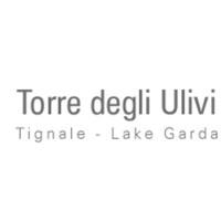 partner__0002_logo-torredegliulivi